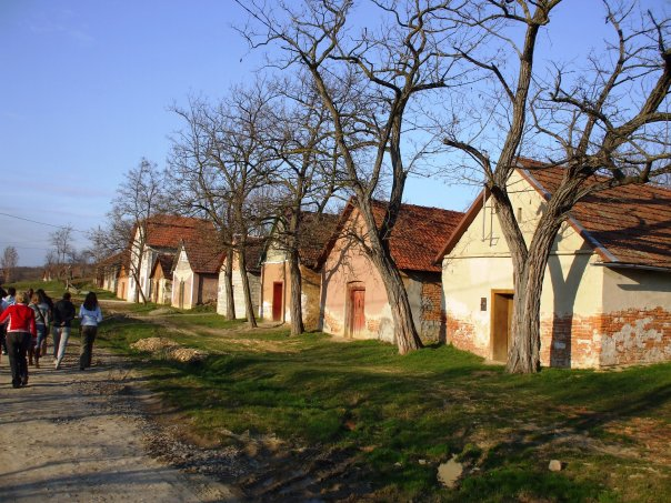 London Fencing Club trip to Satu Mare wine cellars